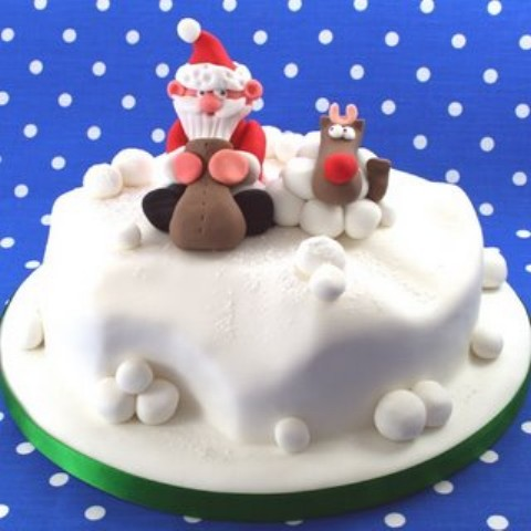 Christmas Cake Ideas manorhousehomeeconomics